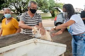 Vacinação antirrábica  - Mais de 16 mil animais já foram imunizados contra a raiva em dois sábados de campanha