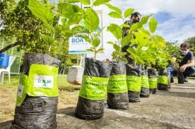 Meio Ambiente: Prefeitura homenageia vítimas da covid-19 em memorial no Bosque dos Papagaios